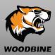 Woodbine CSD