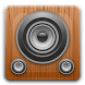 RadioBizzz Player by Julien ARNOULD
