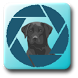 PuppyShare Pro by Practical Apps, LLC