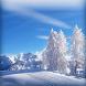 Winter Wonderland LWP by Jay´s Appsolution