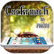 3D Cockroach in Phone prank by Luxurious Prank App