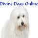 Divine Dogs Online Magazine by Divine Dogs Online