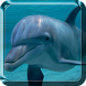 Dolphin Live Wallpaper by My Live Wallpaper