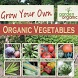 GROWING ORGANIC VEGETABLES by theotherhat.biz