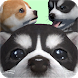Cute Pocket Puppy 3D - Part 2 by Pocket Games Entertainment