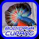 Cara Budidaya Ikan Cupang by ENHA Studio