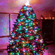 Christmas Tree Spin LWP by Daksh Apps
