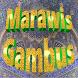 Marawis Gambus Azizah Mp3 by Zona Islam