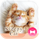 Lovely Wallpaper Sleepy Cat Theme by +HOME by Ateam