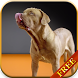 Dogs Licking Screen Wallpaper by CharlyK LWP