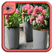 Modern Garden Pots Design by Black Arachnia