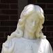 Sacred Heart Catholic Church Charleston by Liturgical Publications, Inc.