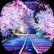 Sakura Live Wallpaper by Happy live wallpapers