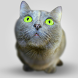 Cat Wallpapers by Creative apps and wallpapers