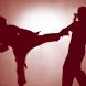 Martial Arts Jigsaw Puzzles by ulyadizzy