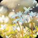 Blue Hyacinth Live Wallpaper by DynamicArt Creator