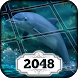 2048 Game by Difference Games LLC