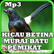 Kicau Pemikat Murai Batu Mp3 by iky94 studio