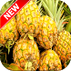 Pineapple Wallpapers by Fresh Wallpapers