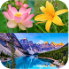 Nature Wallpapers by Love Nature