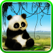 Animated Panda Live Wallpaper by Live Wallpapers 3D