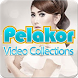 Pelakor: Kumpulan Koleksi Video Lagu Dangdut Koplo by Al Amira