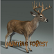 Hunting Forest HD by Knap Games