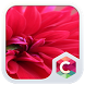 Red Pure Flowers Theme: Pretty Love Wallpaper HD by Best theme store