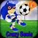 Super Sonic Soccer Adventure by Janisse Dev World