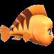 fish run by Ozzkar
