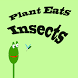Plant Eats Insects by Carlos Mingoto Jr.