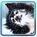 Winter Snow - Live Wallpaper by Error300.com