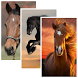 Horse Live Wallpaper by Nika X