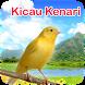 Kicau Burung Kenari by Masturi Developer