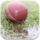 DL Calculator for Cricket by GreenPirates