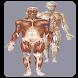 Atlas Anatomie Humaine by Brouksy