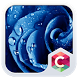 Blue Rose CLauncher Theme by CG-Live-Wallpapers