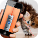 Laser Pointer for Cat FREE by Dogy Dog Game