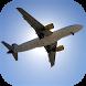 Airplane Flight Simulator by dzbz