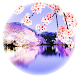 【Cherry blossoms live】 by TheCoolJapan