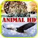 Gambar Latar Wallpaper Animal HD by DyoDev