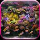 Aquarium Video Live Wallpaper by CharlyK LWP