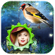 Birds Photo Frames HD by One key