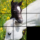 Slider Puzzle Game Wild Horses by Slerp Games