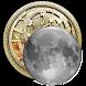 Moon Calendar by Polyariz