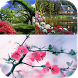 My Nature Wallpapers by Love Nature