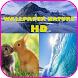WALLPAPER WILD ANIMAL HD by DyoDev