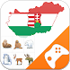 Hungarian Game: Word Game, Vocabulary Game