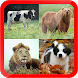Learn Animals for Kids Free by DamTech Designs