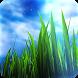 3D GRASS Live Wallpaper by maxelus.net